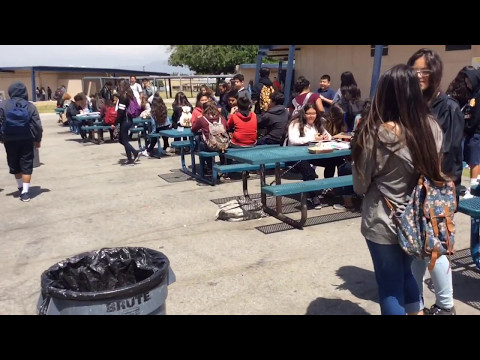 Torch Middle School: Lunch Time Craziness