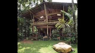 my bamboo house