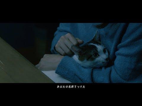モノクロパンダ - 猫 (Official Music Video)