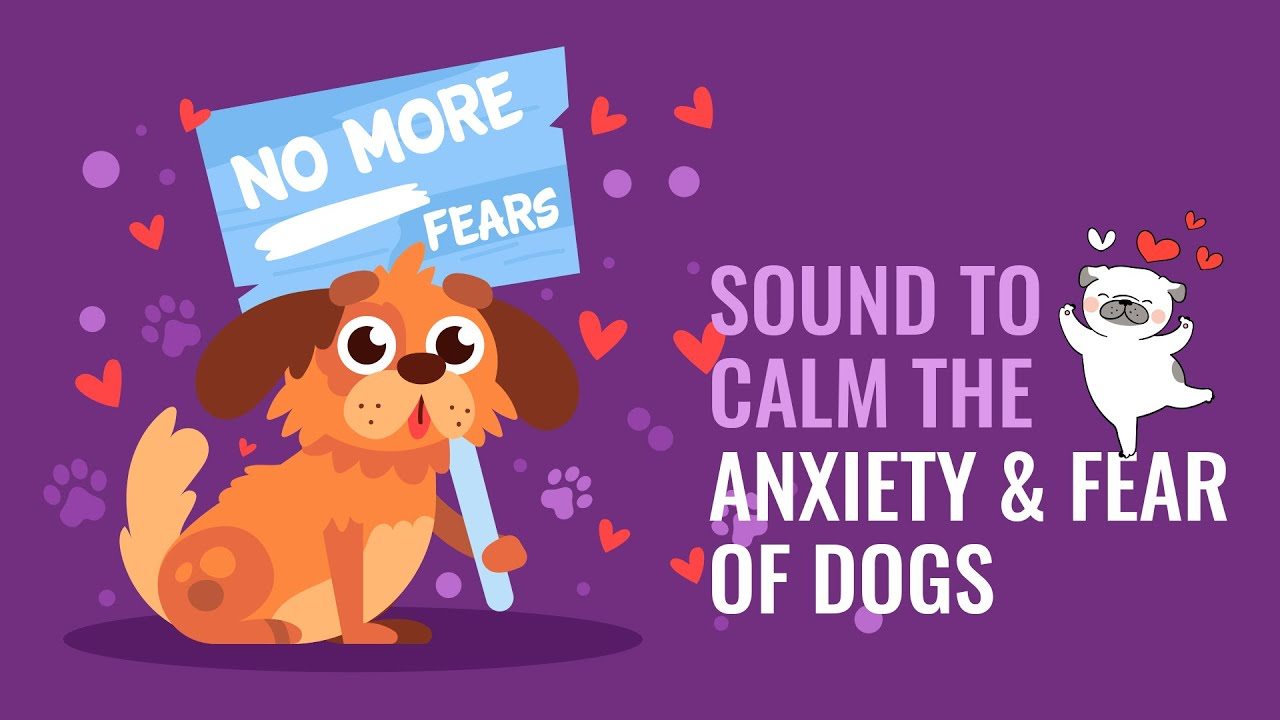 Sound To Calm the Anxiety & Fear of Dogs | Dog Hypnosis | Binaural Beats