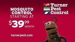 Get Rid of Mosquitoes with Turner Pest Control {Meet Munchy}