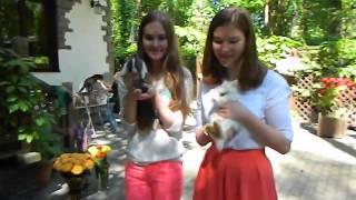 Кролики на праздник, на свадьбу, 8(965)380-13-11 Москва www.zooteatr.ru