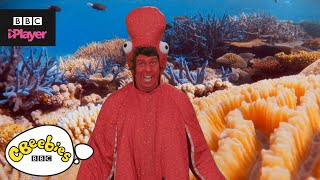 Andy's Aquatic Raps | Funky Octopus | CBeebies