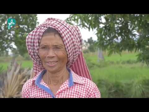 Women in Agroecology: Stories from the Field