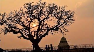 Taittiriiya Upanishad (Shiiksha-Valli) (Brahmaananda-Valli) (Bhrugu-Valli)