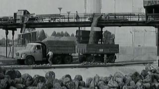 Šurany - cukrovar (1975)