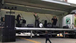 Boogie On Reggae Woman (Stevie Wonder Cover) - Mean Blue Planets - Sewickley Arts & Music Festival