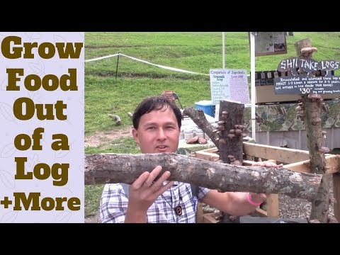 Grow Food Out of a Log and More from Mother Earth News Fair
