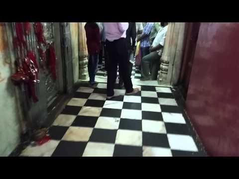 "Karni Mata ""Rat"" Temple Deshnoke Rajasthan"