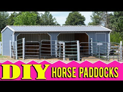 How To Make Paddocks For Horses For Less Than $500