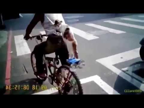 Funny Videos of People Falling Accidents,Best Funny Videos Fail Compilation New FULL