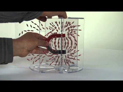 PH EM MF DEMO 70011A V0513 3D Magnetic Field Demonstrations Bar and Horseshoe Magnets
