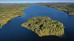 Autumn colors in Pello Lapland Finland: Lappi Ruska - syksyn värit Napapiirillä Arctic Circle