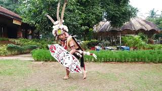 Download lagu Tarian demanai makang kenyah