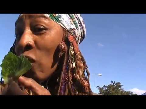 Happy Solar Return 2 Emperor Azzie Tour His Amazing Community Garden