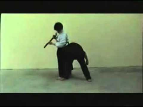 Realistic & Rational SCIENTIFIC AIKIDO