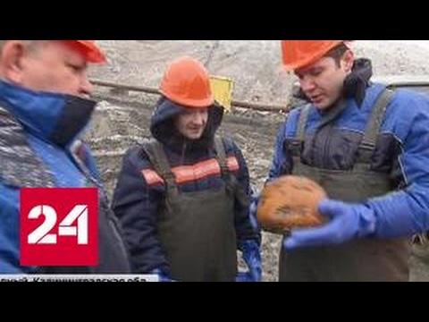 Янтарный бизнес: космический хаос за копейки