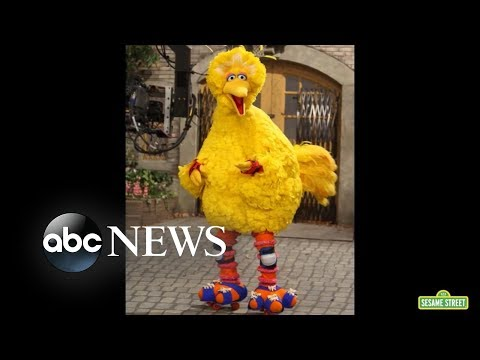 Billy and Julie - News You Need: The Man Behind Big Bird Retires