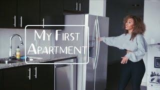 My Empty Houston Apartment Tour