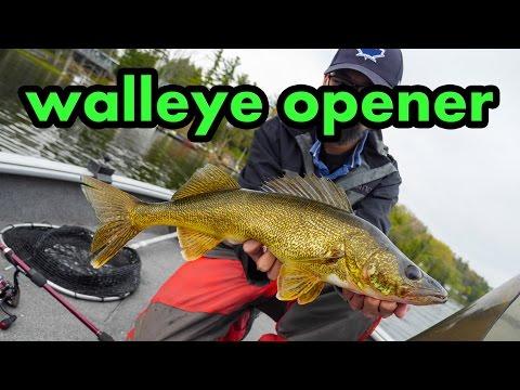 RIDICULOUS Walleye Opener!