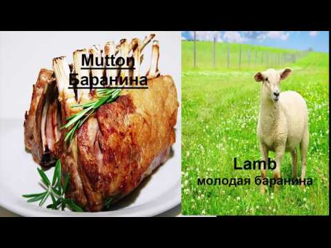 Vocabulary food/meat