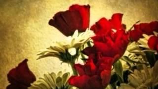 Sab Ko Khuda Ki Khudai Ne Mara [Full Song] (HD) - Dilbar