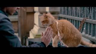 Уличный кот по имени Боб (2016) — Трейлер