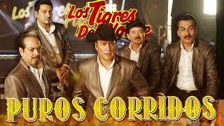 Los Tigres Del Norte 🔥  Puros Corridos Mix 🔥 Puros Corridos Pesados Mix 2021
