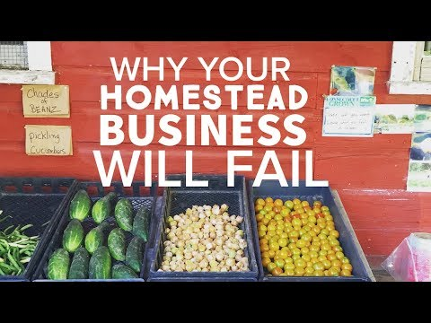 3 Reasons Why Homestead Businesses Fail