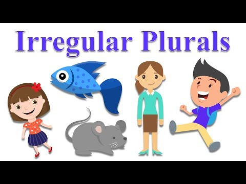 Irregular Plurals - Learning Educational Video - Part 1