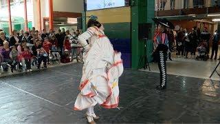 El Ballet Folclórico Nacional realizó una función solidaria en el Hospital Garrahan