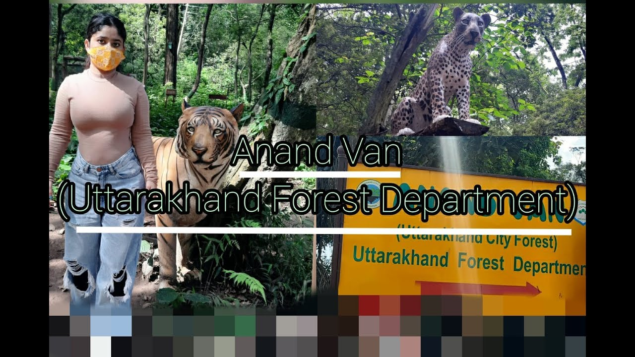 Download Visit Anand Van In Dehradun For Peace , Tranquility & Health #firstvlog