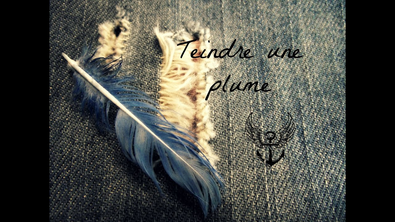 comment teindre une plume ? - youtube
