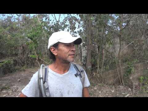 Joe Santiago of the Luquillo Farm Sanctuary