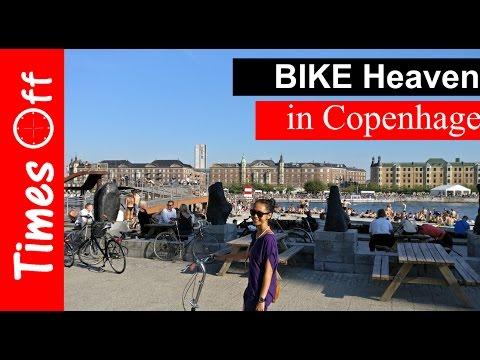 Bikes Heaven in Copenhagen