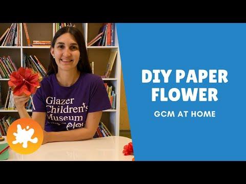 Women's History Month & Paper Flower Craft