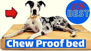Best Dog Bed for Chewers 2020 | Top 5 Chew Proof Dog Bed.