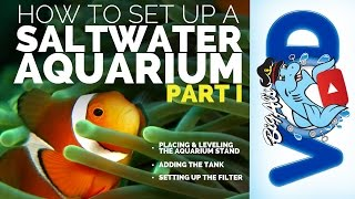 How To Set Up a Saltwater Aquarium • Part I • BigAlsPets.com