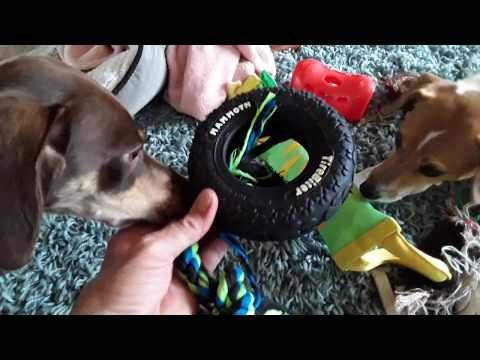 product-reviews.-dog-toys:-mammoth-tire-biter-and-petstages-firehose-friends.