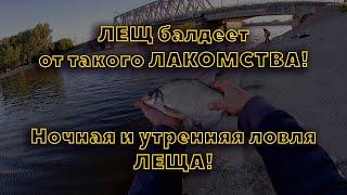 ЛЕЩ балдеет от ТАКОГО ЛАКОМСТВА Ночная и утренняя рыбалка на ЛЕЩА в Казани