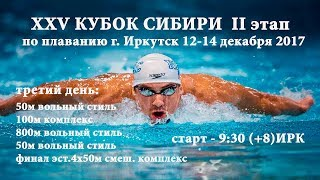 XXV КУБОК СИБИРИ II этап, г. Иркутск, 12-14 декабря 2017 день третий