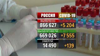 В России за сутки выявлено 5204 случая заболевания коронавирусом