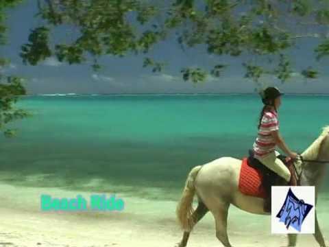 Vanuatu Club Hippique