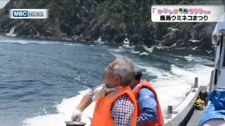 鹿島ウミネコまつり