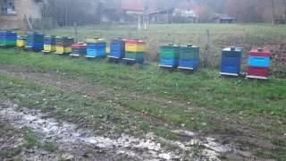 Пчеловодство Германии. 18. November 2016(Пчеловодство., 2016-11-18T15:34:55.000Z)