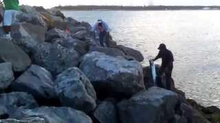 Pesca de peto 9kg en escolleras Tampico-Madero Tamaulipas 11/junio/2013