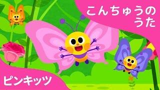 チョウチョのワルツ | Flitter-Flutter Butterflies | こんちゅうのうた | ピンキッツ童謡