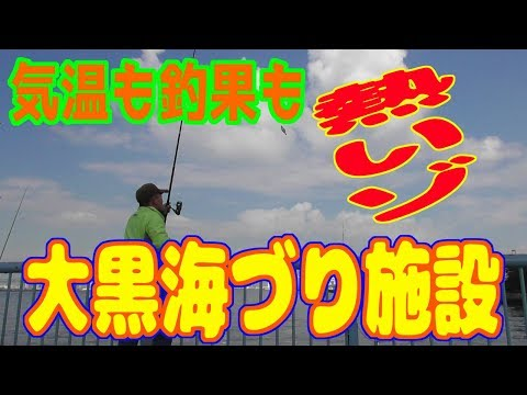 釣り動画ロマンを求めて 247釣目(大黒海づり施設)