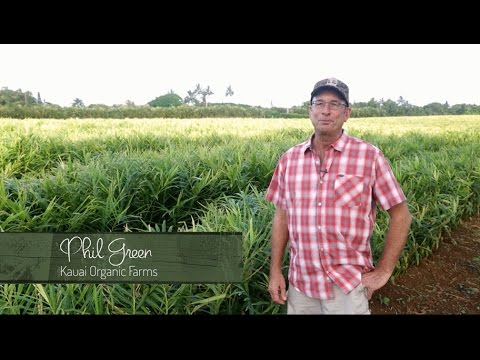 Farm Fresh Partner, Kauai Organic Farms