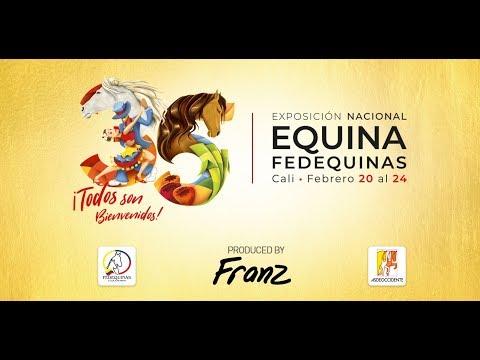 Trote y Galope Nacional Equina Fedequinas 2019